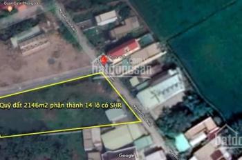 Cơ hội đầu tư sinh lời cao, an cư lạc nghiệp tại TP. HCM, chỉ duy nhất 14 lô đất SHR tại Bình Chánh
