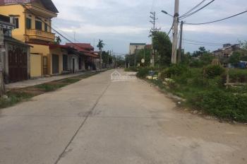 Bán đất phân lô trúng đấu giá khu Lỗ Đòng - Bồ Cóc - Đại Đồng, giá 10 tr/m2