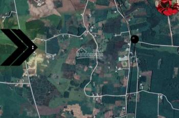 Bán gấp đất PL mặt đường xã Phước Long Thọ, căn góc 2 thoáng 517m2, SĐCC riêng quyển, 500 triệu