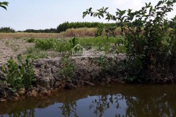 Chính chủ gửi bán vài lô đất nông nghiệp xã Phú Đông, Nhơn Trạch, Đồng Nai, LH: 0916259669