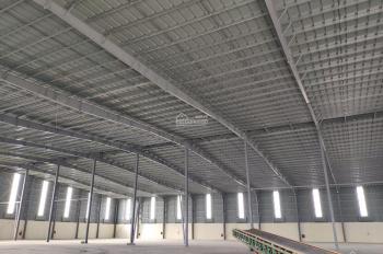 Cho thuê kho xưởng KCN Đình Vũ, DT 5000m2, có cầu cân 120 tấn