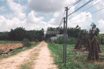 Cần bán gấp lô đất thổ vườn 824m2 xã Phú Thạnh, đường 6m, giá rẻ