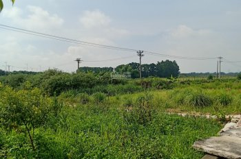 Tôi cần bán gấp mảnh đất Đình Trung, Xuân Nộn, Đông Anh, Hà Nội. Diện tích 60m2