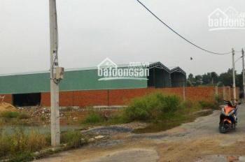 Bán 675m2 xưởng mới xây, đủ tiện nghi, 4tr7/m2, container đỗ cửa, cách km15 Đại Lộ Thăng Long 100m
