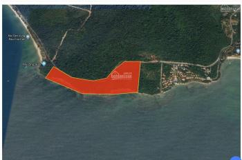 Cần bán 1000m2/450tr đất trồng cây mặt tiền biển Cửa Cạn
