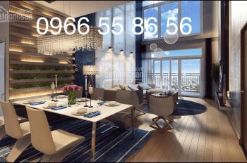 Chính bán 1 số căn chung cư Tháp A, Tháp B, Tháp C, Golden Palace Mễ Trì DT: 87m2, 118m2 123m2