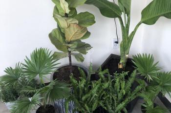 Cho thuê mặt bằng 2 mặt tiền làm văn phòng cafe tại dự án Senturia Vườn Lài