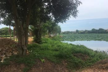 Đất Hòa Lạc view hồ sen tự nhiên 3ha giá chỉ 11 triệu/m2. Cạnh khu CNC Hòa Lạc