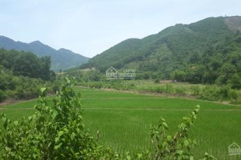 Cần bán 1.9ha đất thổ cư làm nghỉ dưỡng, nhà vườn cuối tuần tại Tiến Xuân, Thạch Thất, Hà Nội