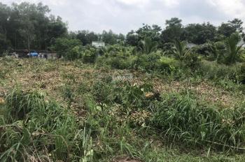 Bán lô đất ở gần trung tâm dạy nghề huyện Xuân Lộc, hàng ngộp có giá tốt cho nhà đầu tư