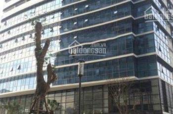 Cho thuê văn phòng phố Kim Mã, giá 200 nghìn/m2/tháng
