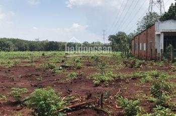 Bán đất trồng sầu riêng tại Xuân Lộc, Đồng Nai