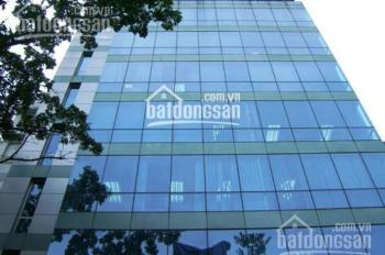 Cho thuê văn phòng DT đa dạng trên phố Bùi Thị Xuân, Triệu Việt Vương, giá 250 nghìn/m2/th