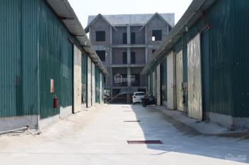 Chính chủ cho thuê kho 200m2 - 300m2 - 1000m2, khu vực Thuận Thành, Bắc Ninh, 0981 358 611