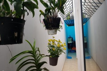 Nhà gần Suối Tiên, Bệnh Viện Ung Bướu, P. Tân Phú, Q9
