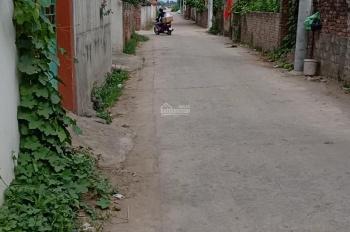 Cần bán gấp lô ở Tân Trại, Phú Cường, Sóc Sơn