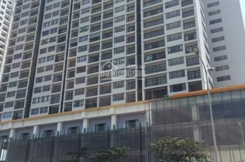 Do cần tiền đầu tư kinh doanh nên gia đình tôi cần bán lại gấp căn hộ 3 phòng ngủ dự án N03T3&T4