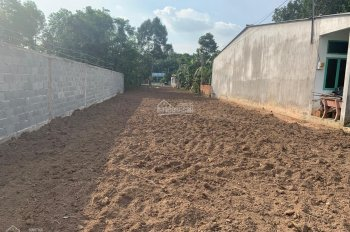 Bán đất hai mặt tiền DT 9.8 x 100m tại đường Bùi Thị Điệt, Xã Phạm Văn Cội, Củ Chi