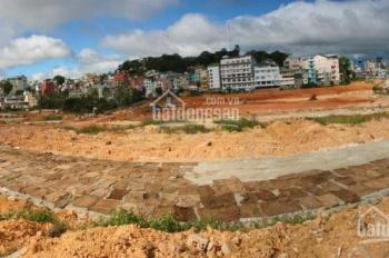 Nhận giữ chỗ siêu dự án MT đường hoa phượng tím, view hồ Tuyền Lâm, giá chỉ từ 850tr/nền