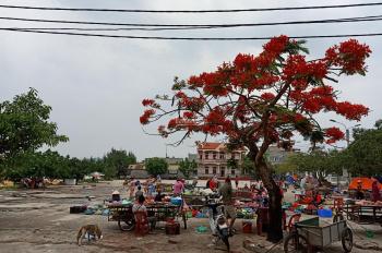 Bán đất trung tâm Quan Lạn Minh Châu - Vân Đồn 2 mặt tiền - Vị trí vàng. Liên hệ 070 555 3223