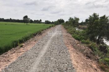 Bán đất công huyện Đức Hòa giá rẻ, 17x73m đất nông nghiệp xã Tân Phú