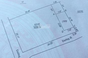 Lô đất 2 mặt tiền giá đầu tư chỉ 1.75tr/m2 xã Cổ Đông, Sơn Tây, Hòa Lạc, 1039m2, LH: 0333 370 823