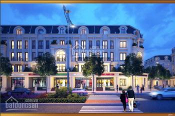 Chính chủ bán liền kề vườn Louis City ĐN mặt đường 21m KD tốt nhận nhà ở ngay LH: 0973252683