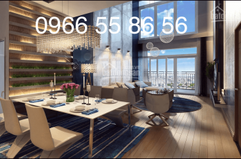 Cho thuê chung cư cao cấp Hòa Bình Green 376 đường Bưởi, DT 123,7m2, 3PN, 2WC, full NT, 0987689138