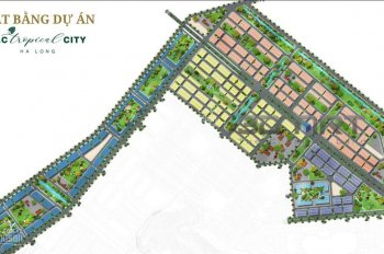 Bán cắt lỗ lô đất nền dự án FLC Tropical City Hạ Long, phường Hà Khánh
