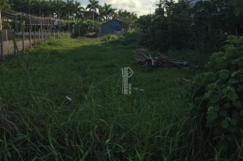 Bán đất mặt tiền đường 835B xã Phước Lý, Long an