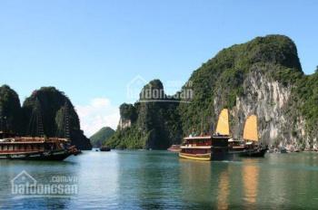 Bán đất liền kề biệt thự khu đô thị Làng Bang giá rẻ - 0943 926 088