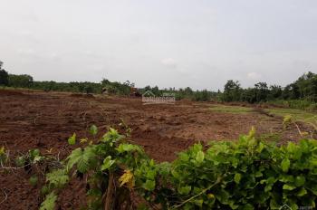 Bán 1.2 ha có đất đường hẻm bê tông 4m, xã Song Ray, huyện Cẩm Mỹ, giá đầu tư chỉ 410tr/sào