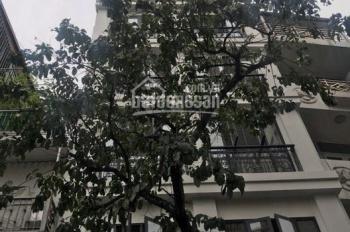 Bán nhà lô góc mặt phố Hàng Điếu, DT 45m2 x 8T MT 5m thang máy, 36,5 tỷ