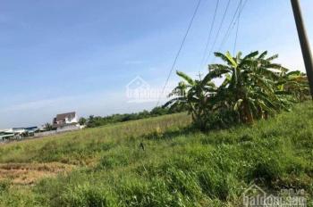 Cần bán 2 thửa đất cạnh đường dẫn vào cao tốc Mỹ Thuận - Cần Thơ
