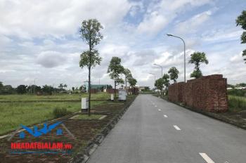 Bán đất siêu hiếm cách Vinhomes vài bước chân, bán 2000m2 đất khu làng nghề Kiêu Kỵ