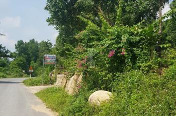 Bán 1 mẫu đất MT đường nhựa Khu 1, thị trấn Gia Ray, Xuân Lộc, Đồng Nai