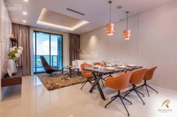 Bán hoặc cho thuê căn hộ 1 Phòng ngủ Richlane Residences ngay Phú Mỹ HƯNG