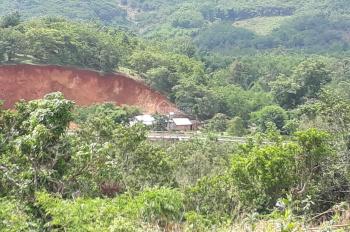 Kẹt tiền bán 6ha đất đỏ ở Đức Linh Bình Thuận. thích hợp làm trang trại trồng sầu riêng cao su.