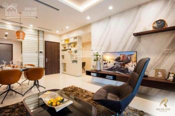 Bán căn hộ Richlane kế VivoCity, TT 30% nhận nhà ở, 70% trả 3 năm, CK 8%, free 2 năm quản lý