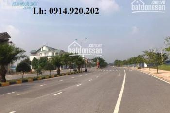 Bán đất khu đô thị Long Hưng City, khu 4, lô RD05, bán nhanh giá 1,65 tỷ, LH nhanh: 0914.920.202