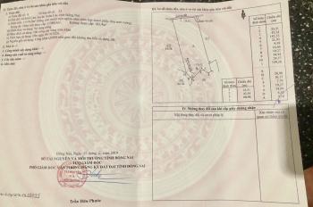 Chính chủ bán 11570m2 đất Suối Cao - Xuân Lộc Đồng Nai