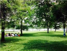 Lá phổi thành phố ! Mặt phố Vân Hồ xây mới 2018 , nhìn thẳng ra Công Viên , 094 1331 182.