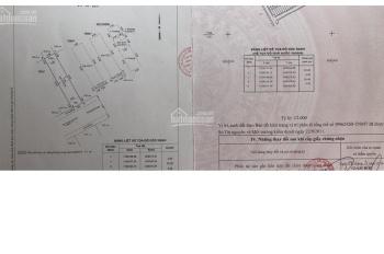 HOT - Bán nhà đường đinh Tiên Hoàng 1 trệt 4 lầu, 4.5x18m giá 12.5 tỷ
