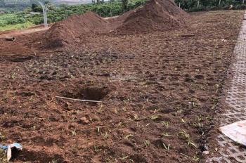 Đất nền Bảo Lộc giá tận gốc, ngay khu trung tâm chỉ 300tr, diện tích 100m2