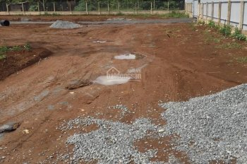 Bán đất Bảo Lộc bao rẻ, bao sổ, bao hot, bao tất cả. Giá 300 triệu 100m2, đã có sổ full thổ cư 100%