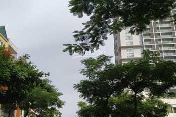 Tòa Complex 11 tầng Cát Linh, gara, showroom, Apt, 86m2 x 11T, MT 4.5m, 31 tỷ, LH 0917420066