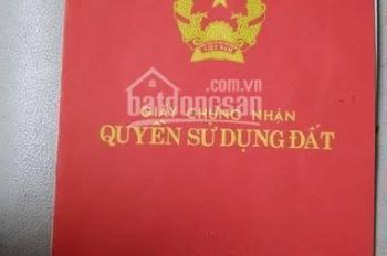 Còn 1 lô duy nhất tại Thái Phù, Mai Đình, Sóc Sơn 75,4m2 giá chỉ 5,5 triệu/m2. LH 0966163832