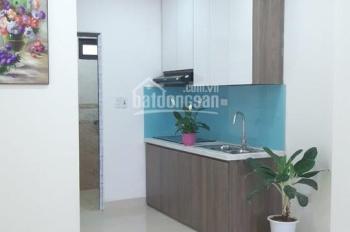 Chủ đầu tư mở bán chung cư 205 Xuân Đỉnh diện tích 33 - 48m2 cạnh ngay công viên Hòa Bình