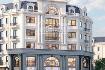 Mở bán Kiến Hưng Luxury - Cơ hội sở hữu biệt thự liền kề tốt nhất 2019