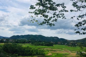 Chính chủ cần bán 5800m2 tại Yên Bài - Ba Vì, gần nhiều khu Resort giá 170tr/sào